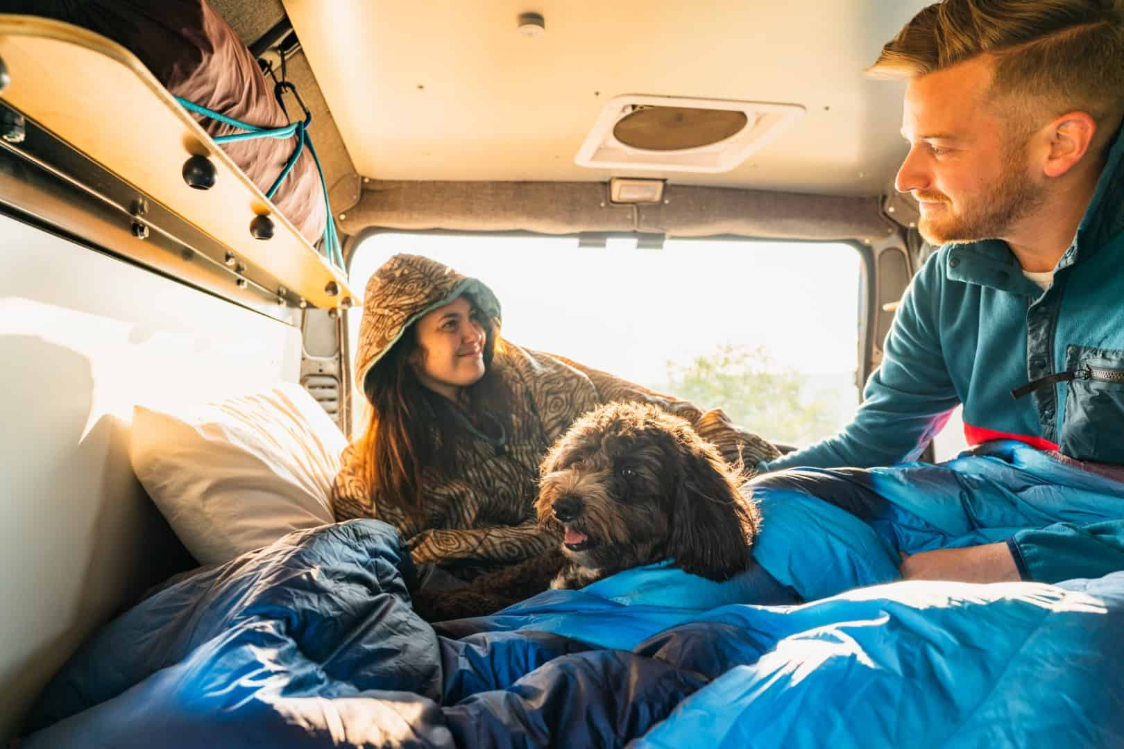 Photo of couple lounging in van with dog